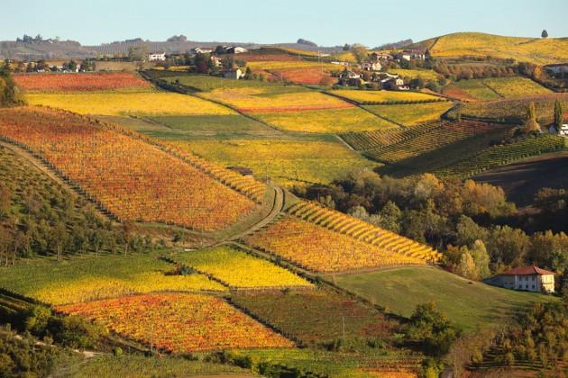 Landsbygden Piemonte, Langhe