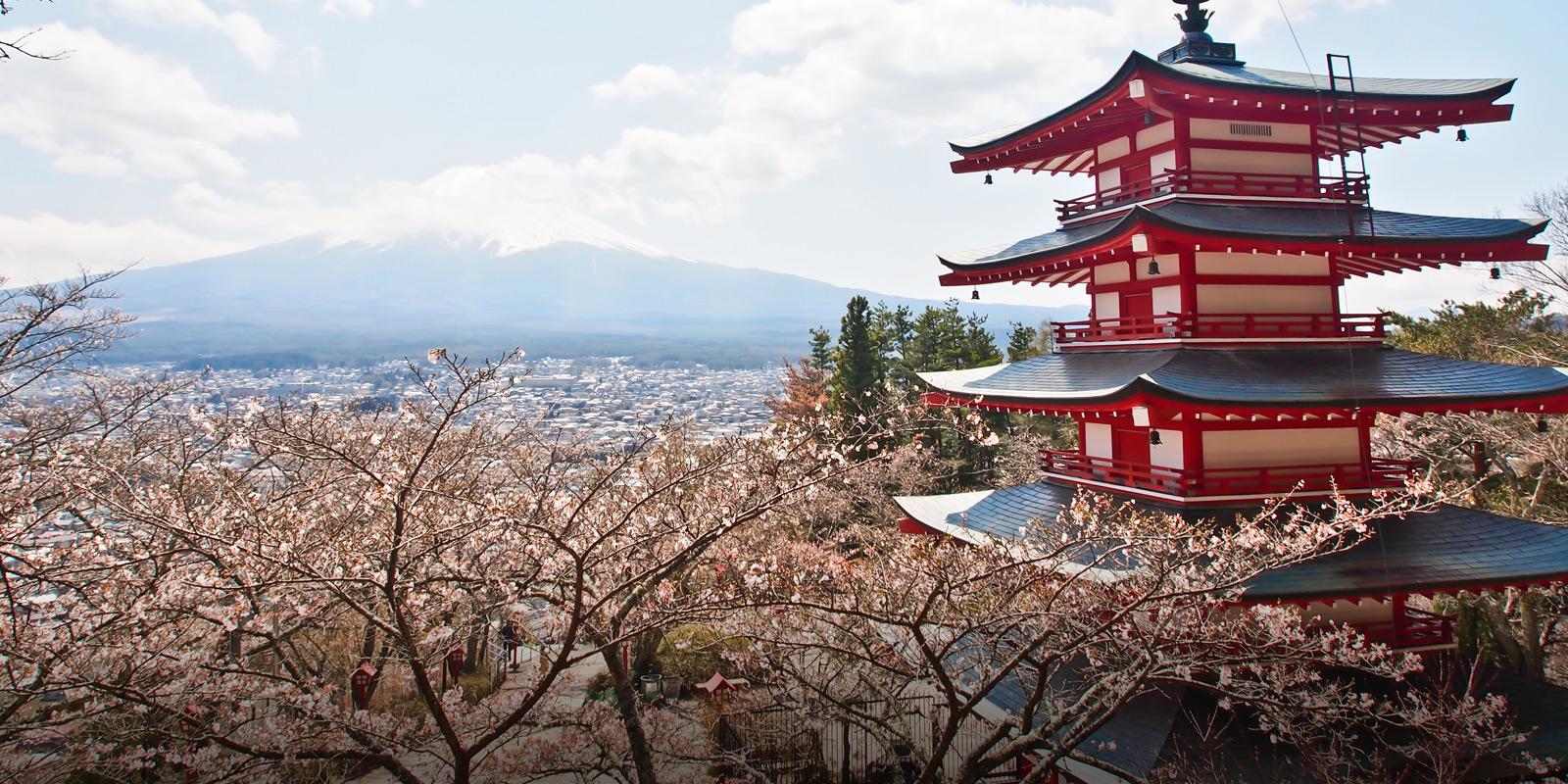 Japan körsbär