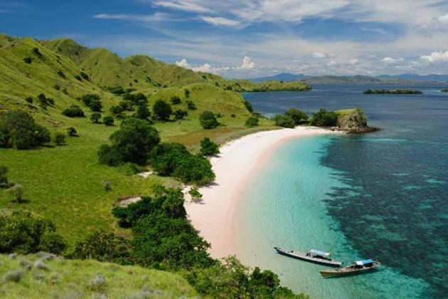 Komodo i Indonesien