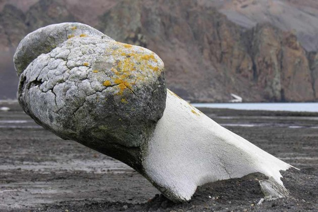 Deception Island Antarktis
