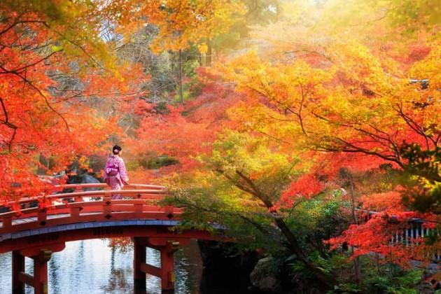Höstfärger i Japan