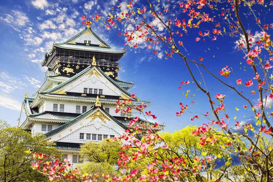 Trädgård i Japan