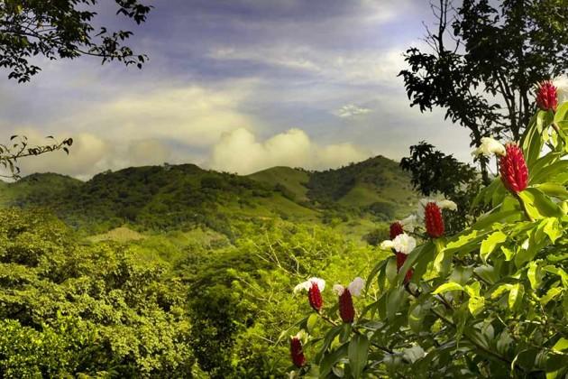 Vacker natur i Costa Rica