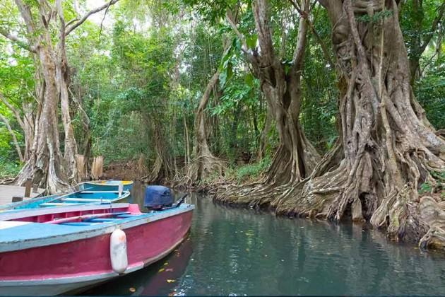 Flodbåtar Dominica Karibien
