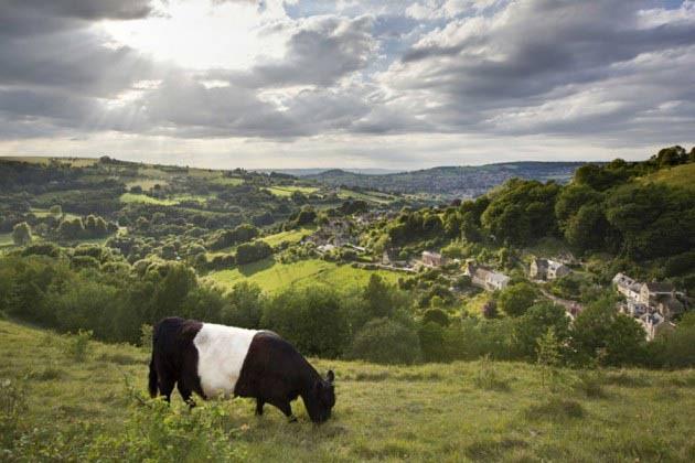 Cotswolds landsbygd England