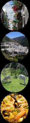 Konferenser i Marbella Spanien