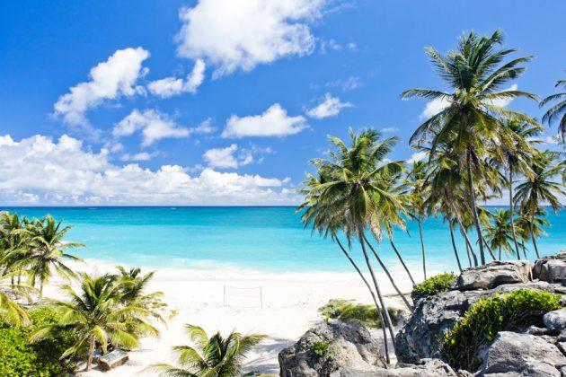 Strand, palmer och turkosblått hav i Karibien.