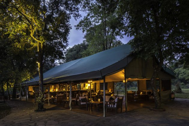 tält bar safari Kenya