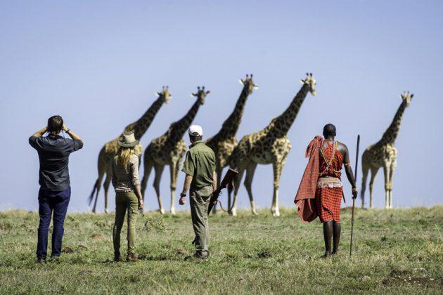 Safari till fots i Masai Mara.