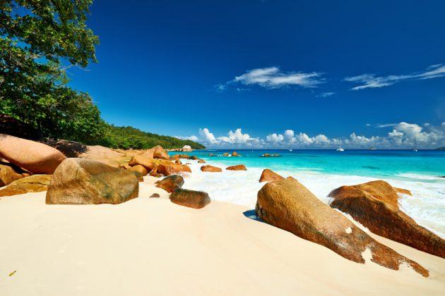 Strand, grönska och hav på Seychellerna.