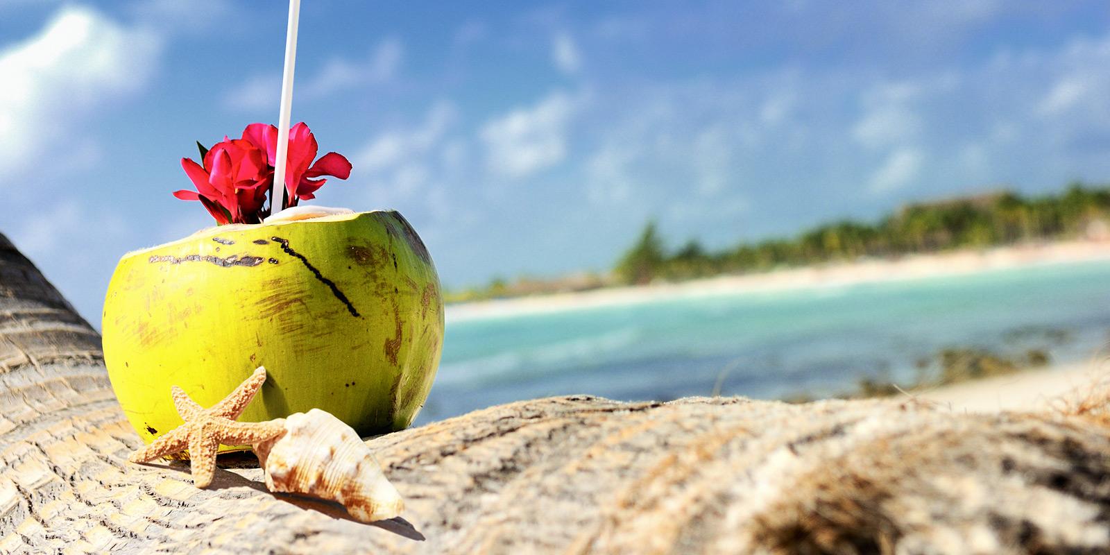Kokosnöt med sugrör vid vacker strand.